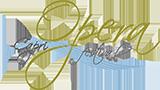 logo160-paypal